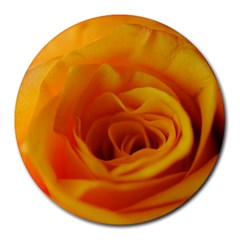 Yellow Rose Close Up 8  Mouse Pad (Round)