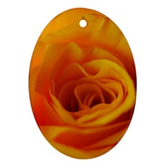 Yellow Rose Close Up Oval Ornament