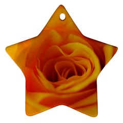 Yellow Rose Close Up Star Ornament
