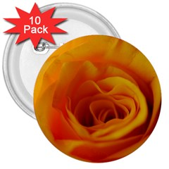 Yellow Rose Close Up 3  Button (10 pack)