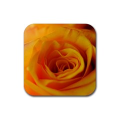 Yellow Rose Close Up Drink Coaster (square)