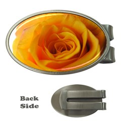 Yellow Rose Close Up Money Clip (Oval)