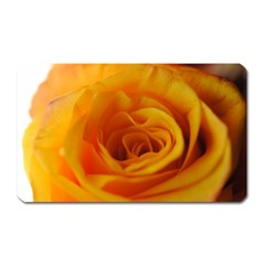 Yellow Rose Close Up Magnet (Rectangular)