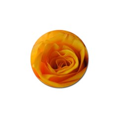 Yellow Rose Close Up Golf Ball Marker 10 Pack