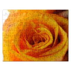 Yellow Rose Close Up Jigsaw Puzzle (rectangle)
