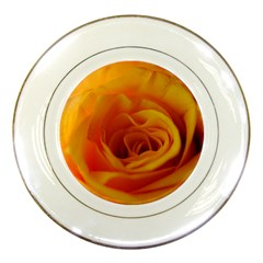 Yellow Rose Close Up Porcelain Display Plate