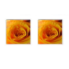 Yellow Rose Close Up Cufflinks (Square)