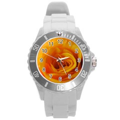 Yellow Rose Close Up Plastic Sport Watch (Large)
