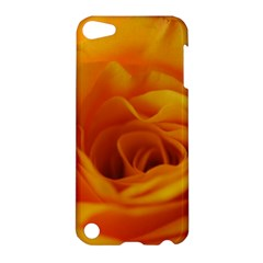 Yellow Rose Close Up Apple iPod Touch 5 Hardshell Case