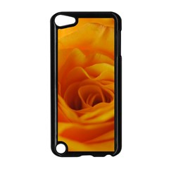 Yellow Rose Close Up Apple iPod Touch 5 Case (Black)