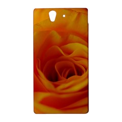 Yellow Rose Close Up Sony Xperia Z (L36H) Hardshell Case