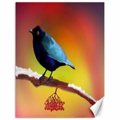 The Blue Bird Canvas 12  x 16