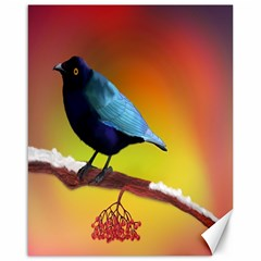 The Blue Bird Canvas 16  X 20