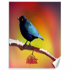 The Blue Bird Canvas 18  x 24