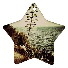 Sète Star Ornament