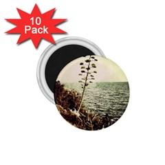 Sète 1 75  Button Magnet (10 Pack)