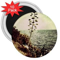Sète 3  Button Magnet (10 Pack)