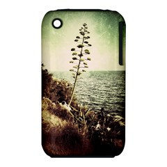 Sète Apple iPhone 3G/3GS Hardshell Case (PC+Silicone)