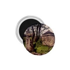 Toulongergues2 1.75  Button Magnet