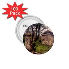 Toulongergues2 1.75  Button (100 pack)