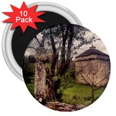 Toulongergues2 3  Button Magnet (10 pack)