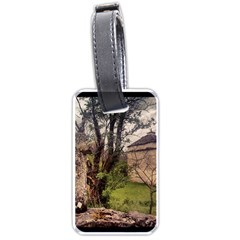 Toulongergues2 Luggage Tag (One Side)