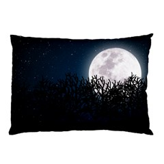 Night time landscape Pillow Case (Two Sides)