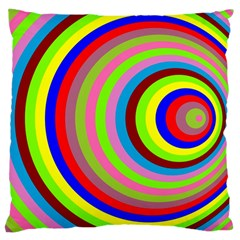 Color Large Cushion Case (Two Sided)