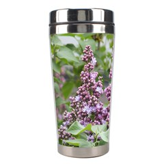 Purple Lilac Syringa Blossoms Stainless Steel Travel Tumbler