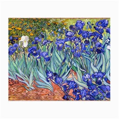 Vincent Van Gogh Irises Glasses Cloth (small, Two Sided)