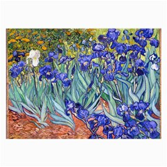 Vincent Van Gogh Irises Glasses Cloth (Large, Two Sided)