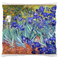 Vincent Van Gogh Irises Large Cushion Case (two Sided)