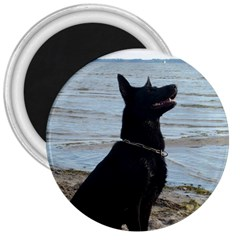 Black German Shepherd 3  Button Magnet