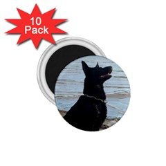 Black German Shepherd 1.75  Button Magnet (10 pack)