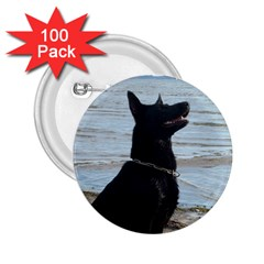 Black German Shepherd 2 25  Button (100 Pack)