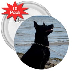 Black German Shepherd 3  Button (10 pack)