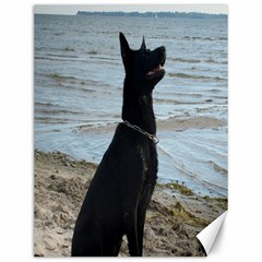 Black German Shepherd Canvas 12  x 16  (Unframed)