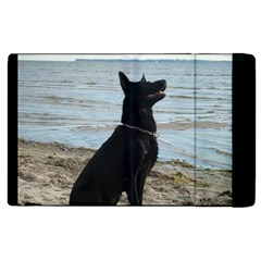 Black German Shepherd Apple iPad 2 Flip Case