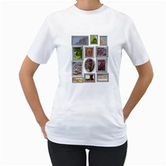 family tree Women s T-Shirt (White)