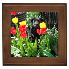 Black GSD Pup Framed Ceramic Tile