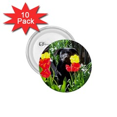 Black GSD Pup 1.75  Button (10 pack)