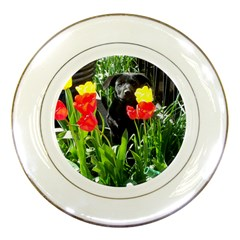 Black GSD Pup Porcelain Display Plate