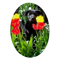 Black GSD Pup Oval Ornament (Two Sides)
