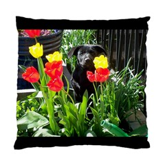 Black Gsd Pup Cushion Case (single Sided)