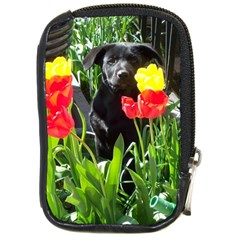 Black Gsd Pup Compact Camera Leather Case