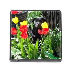 Black Gsd Pup Memory Card Reader With Storage (square)