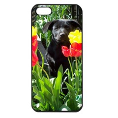 Black Gsd Pup Apple Iphone 5 Seamless Case (black)