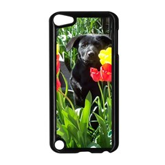 Black GSD Pup Apple iPod Touch 5 Case (Black)