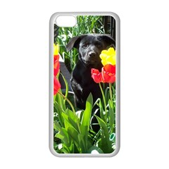 Black GSD Pup Apple iPhone 5C Seamless Case (White)
