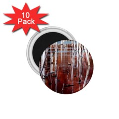 Automn Swamp 1.75  Button Magnet (10 pack)